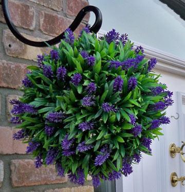 garden design: garden design with growing edible plants indoors year