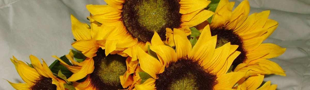 Silk sunflowers