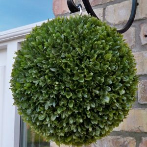 Long leaf olive topiary ball