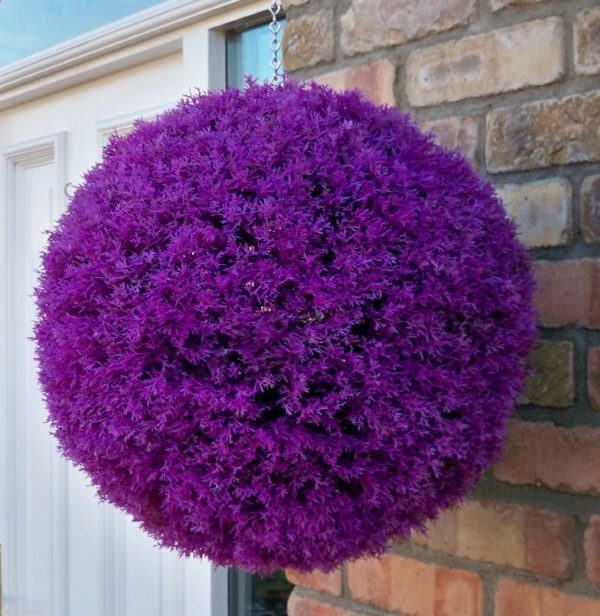 Purple heather topiary ball