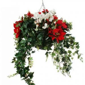Red Poinsettia White Cyclamen artificial hanging basket