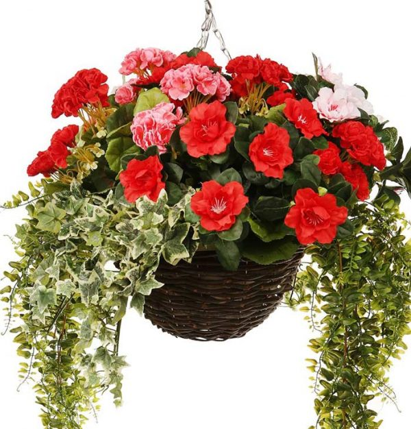 Red Azalea/Pink Azalea/Red Geranium/Pink Geranium