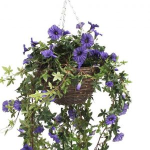 Purple hanging basket