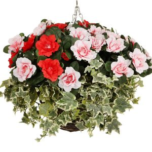 Red and pink azalea hanging basket
