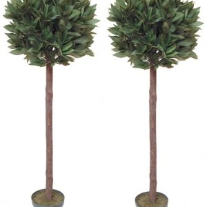 Pair of artificial bay trees