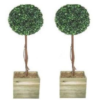 Topiary ball trees