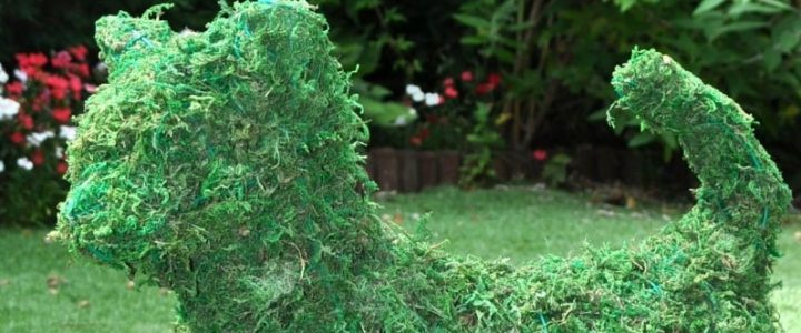 Artificial topiary buying guide