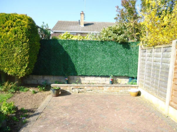 Artificial hedge - afterwards
