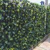 Instant artificial hedge