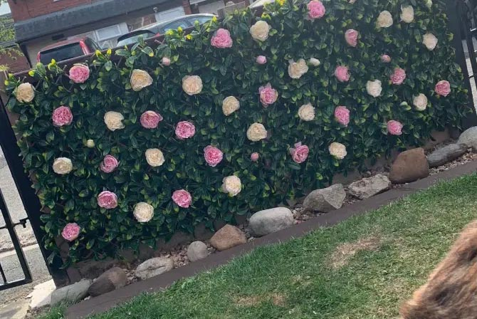 Artificial peony flower wall
