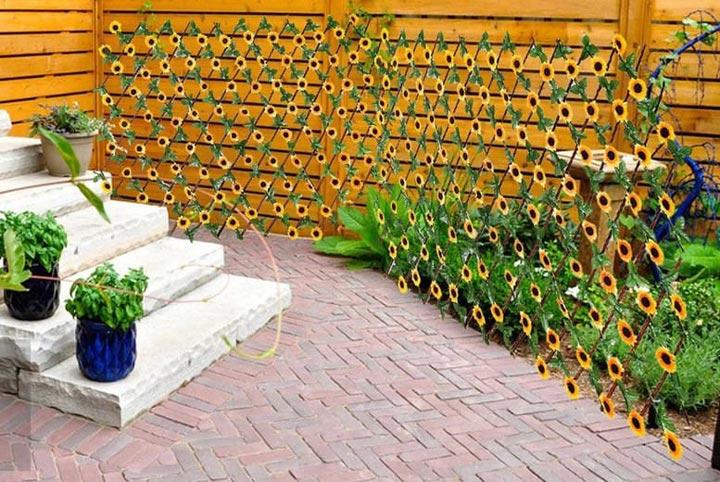 Sunflower flower wall